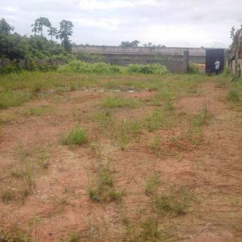 700-square Meters of Land. Sand-filled, Dry, Fenced and Gated with C of O, Along Ijegun - Jakande (new Dualised) Road, By Isheri Bridge, Isheri, Lagos, Mixed-use Land for Sale
