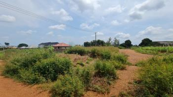Massive 8 Plots of Land with an Attached Sets of 1 Bedroom Bungalow, Before Eastern Blue Pearl Hotels,behind Anamco,off Airport Road, Enugu, Enugu, Mixed-use Land for Sale