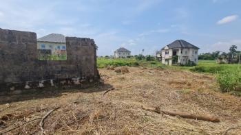 Uncompleted 4 Bedroom Duplex @lintel Level with Spacious Compound, Lagos Village Estate, Akpoga Nike Off Enugu/abakiliki Expressway, Enugu, Enugu, Detached Duplex for Sale