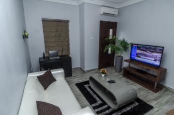 Luxury Finished 1 Bedroom Apartment, Lekki Phase 1, Lekki, Lagos, Mini Flat Short Let