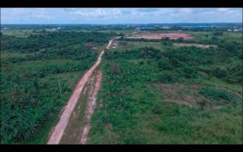 100% Dry and Affordable Land with Good Title Close to The Express, Lagos Ibadan Express Way Opposite Rccg Youth Church, Mowe Town, Ogun, Mixed-use Land for Sale