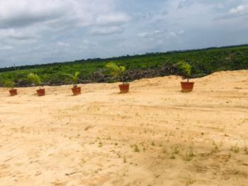 Lagoonfront Estate with a C of O Title, Promo! C of O Land with a Lagoon Resort and Jetty, Adjacent Alaro City, Epe, Lagos, Residential Land for Sale