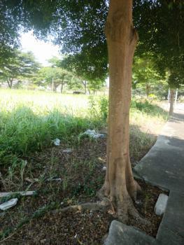 Land, Zion L-23, Banana Island, Ikoyi, Lagos, Mixed-use Land for Sale