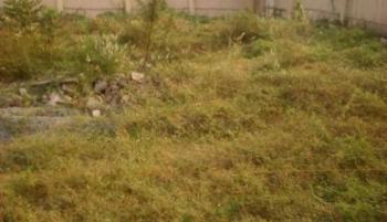 Genuine Plots of Land, Megamound Estate,lekky County., Ikota, Lekki, Lagos, Residential Land for Sale