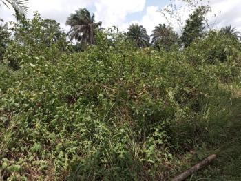a Plot of Land, Dan Akpan Str, Nsit-ibom, Akwa Ibom, Industrial Land for Sale