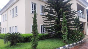 Tastefully Finished 6-bedroom Detached Duplex with Guest Chalet, Bq, Asokoro District, Abuja, Detached Duplex for Rent