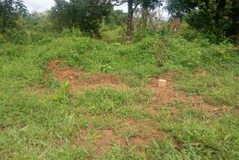 Affordable Land, Maitama District, Abuja, Residential Land for Sale
