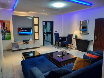 Luxury Standard 1bedroom Apartment in Lekki Phase1, Off Freedom Way, Lekki Phase 1, Lekki, Lagos, Mini Flat Short Let