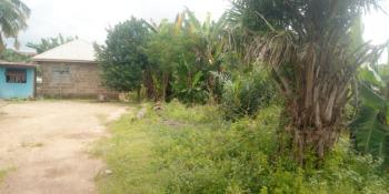 Plot of Land, Oroki Phase 1, Behind Plants and Pillars, Via Opp All Souls Church, Osogbo, Osun, Residential Land for Sale