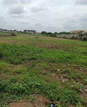 1 Hectares Land Available, Ikota, Lekki, Lagos, Commercial Land Joint Venture