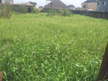 1444 Sqm of Land, Palms Heaven Opposite Channels Tv, Opic, Isheri North, Ogun, Mixed-use Land for Sale