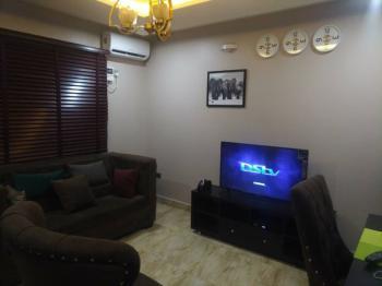 Standard 2 Bedroom  Apartment with Excellent Facilities, Citec Estate, Mbora (nbora), Abuja, Flat / Apartment Short Let