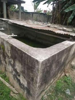 Fish Pond and Three Bedroom Flat in Farm Settlement, Odogunyan Road, First Gate., Ikorodu, Lagos, Detached Bungalow for Sale