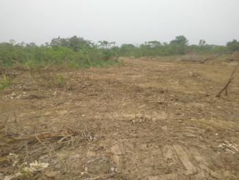 Land, New Independence Layout Phase 2 Ext, Obeagu, Enugu, Enugu, Residential Land for Sale