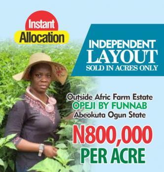 Affordable Farm Land, Opeji By Funnab, Abeokuta South, Ogun, Commercial Land for Sale