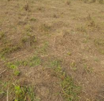 Commercial 6plots of Land Together_, Facing Lekki-epe Express Way Beside Ram Market By Abraham Adesanya,, Ajah, Lagos, Commercial Land for Sale