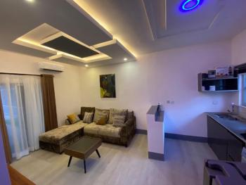 Casa Nova Luxury One Bedroom, 107 Close, Banana Island, Ikoyi, Lagos, Mini Flat Short Let