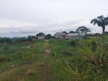 Affordable Plots of Land Available in a Good Neighbourhood, Nestwood Estate, Araromi, Ibeju, Lagos, Residential Land for Sale
