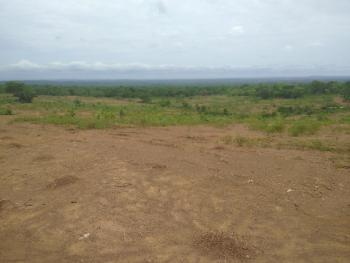 Best Choice Estate, Amorji/ Ugwuomu Nike, After Caritas University, Enugu, Enugu, Residential Land for Sale