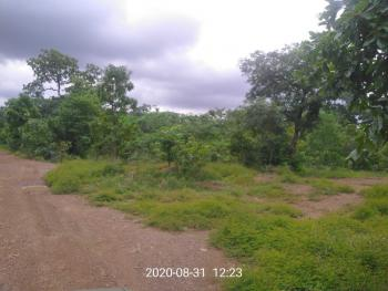 Blue Lake Layout, Ugwuomu Nike, Beside Godfrey Okoye University, Emene, Enugu, Enugu, Mixed-use Land for Sale