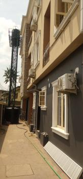 Exercutive and Luxury 2 Bedrooms All Ensuit ( Brand New), Off Park Roas Iponri Costain, Surulere, Lagos, Flat / Apartment for Rent