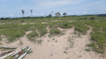 Buy and Build C of O Land with a Promising Return on Investment, 5 Mins Drive From Dangote Refinery, Beside The Central Mosque, Lekki Free Trade Zone, Lekki, Lagos, Residential Land for Sale