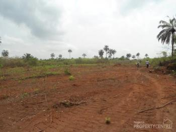 15 Acres of Land with a Deed of Assignment for Investment Purpose, Mowe-ofada, Mowe Ofada, Ogun, Industrial Land for Sale