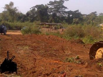Image result for Farm lands in ido local government in ibadan