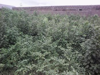 A Plot Of Land, Ikorodu, Lagos, Mixed-use Land for Sale