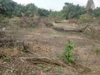 Genuine Plot of Land, Jeddo, Warri, Delta, Land for Sale