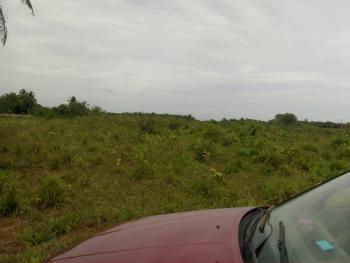 1000 Acres of Arable and Pastoral Land, Ajilete Town Off Owode Idiroko Road., Yewa South, Ogun, Industrial Land for Sale