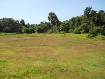 Four[4] Hectares of Land for Commercial Purpose /hotel, Jabi, Abuja, Commercial Land for Sale