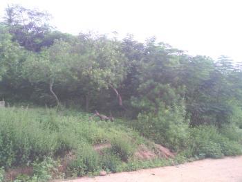 1 Acre of Land, Akegbe Village, Back of U/i Quarters Ajibade Area, Iddo Lga, Ibadan Oyst, Ido, Oyo, Mixed-use Land for Sale