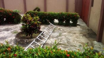 Mini Flat Executive, Omole Phase 1, Ikeja, Lagos, Mini Flat for Rent
