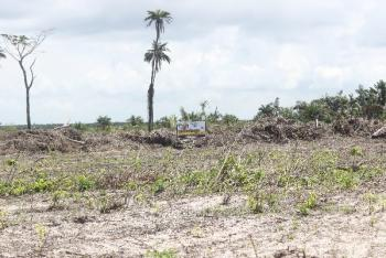 Dry Plots with C of O in The Fastest Developing Neighbourhood on The Continent, Akodo Road, Ibeju Lekki, Lagos, Mixed-use Land for Sale