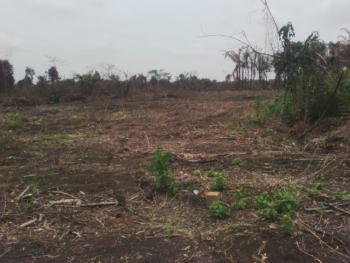 Land for Sale, Gbaga Area of Ogijo, Ojigo, Ogun, Mixed-use Land for Sale