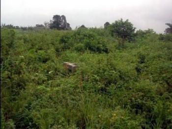 300 Acres Land, Radio Coporation , Ibeshe Road,, Ibeshe, Ikorodu, Lagos, Residential Land for Sale