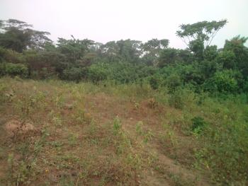 Acres of Land, Imota, Lagos, Mixed-use Land for Sale