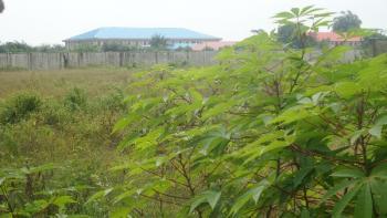 Farm Land, Keffi Express Road, Nyanya, Abuja, Tank Farm for Sale