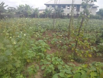 3 & Half Plots of Fenced Land (20million), Aker Road,  Just After Salvation Ministries, Iwofe, Rumolumeni, Port Harcourt, Rivers, Mixed-use Land for Sale