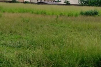 1450sqms Land, Okoye Street. Near Gov. Amechi House, Asokoro District, Abuja, Residential Land for Sale