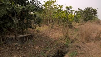 2 and Half Acres of Land, By Organ Guard Office, Opic, Isheri North, Ogun, Industrial Land for Sale