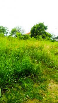 Plots of Land with Setback Office Bungalow, 21 Road, By 211 Road, , Festac Town, Amuwo Odofin, Isolo, Lagos, Commercial Land for Sale