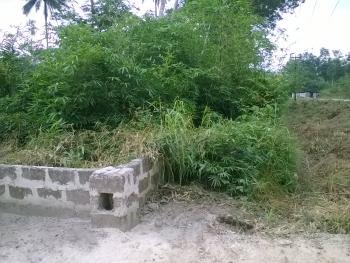 Plot of Land Measuring 100 X 200 Ft, Uduophori Street Otovwodo, Ughelli North, Delta, Mixed-use Land for Sale