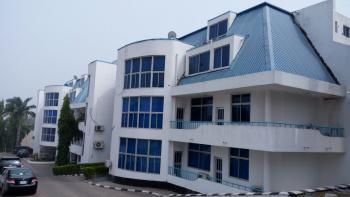 Luxury & Serviced 2 Bedroom, Off Ty Danjuma Street, Asokoro District, Abuja, Flat / Apartment for Rent