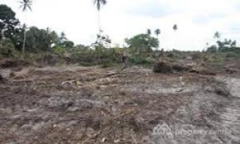 Land, Etche, Rivers, Land for Sale