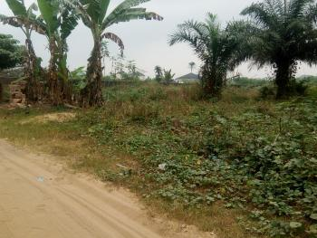 Well Located, Dry and Firm Land Measuring 1000sqm, Ikot Akpan Abia, Uyo, Akwa Ibom, Land for Sale