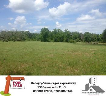 1000sqm Dry Land, Taoridi Street, Bode Thomas, Surulere, Lagos, Mixed-use Land for Sale