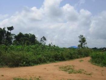 10,000 Plots of Land, Igbo Etche Express Way, Port Harcourt, Rivers, Commercial Land for Sale