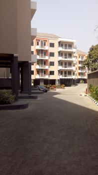 Brand New and Luxury Topnotch 3 Bedroom Fully Serviced Apartment with a Bq, Maitama District, Abuja, Flat for Rent